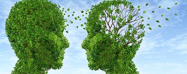 Alzheimer's is a liver disease?!