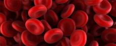 什麼是肝酵素ALT(sGPT),我們又如何可以降低肝酵素?