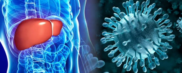 Why is the recovery of liver function not set as top priority in treatment for hepatitis C patients? What is the aim of antiviral treatment?