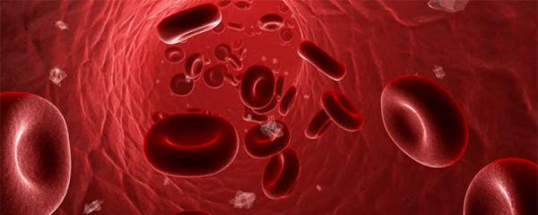 最新的肝酵素ALT建議水平已公布,您的肝酵素是否在建議範圍內?