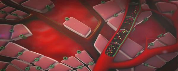肝酵素 ALT 超過標準水平意味著什麼? 什麼時候需要治療?