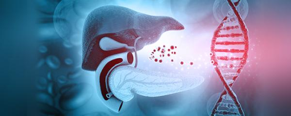 Research finds poor liver health may increase diabetes risk