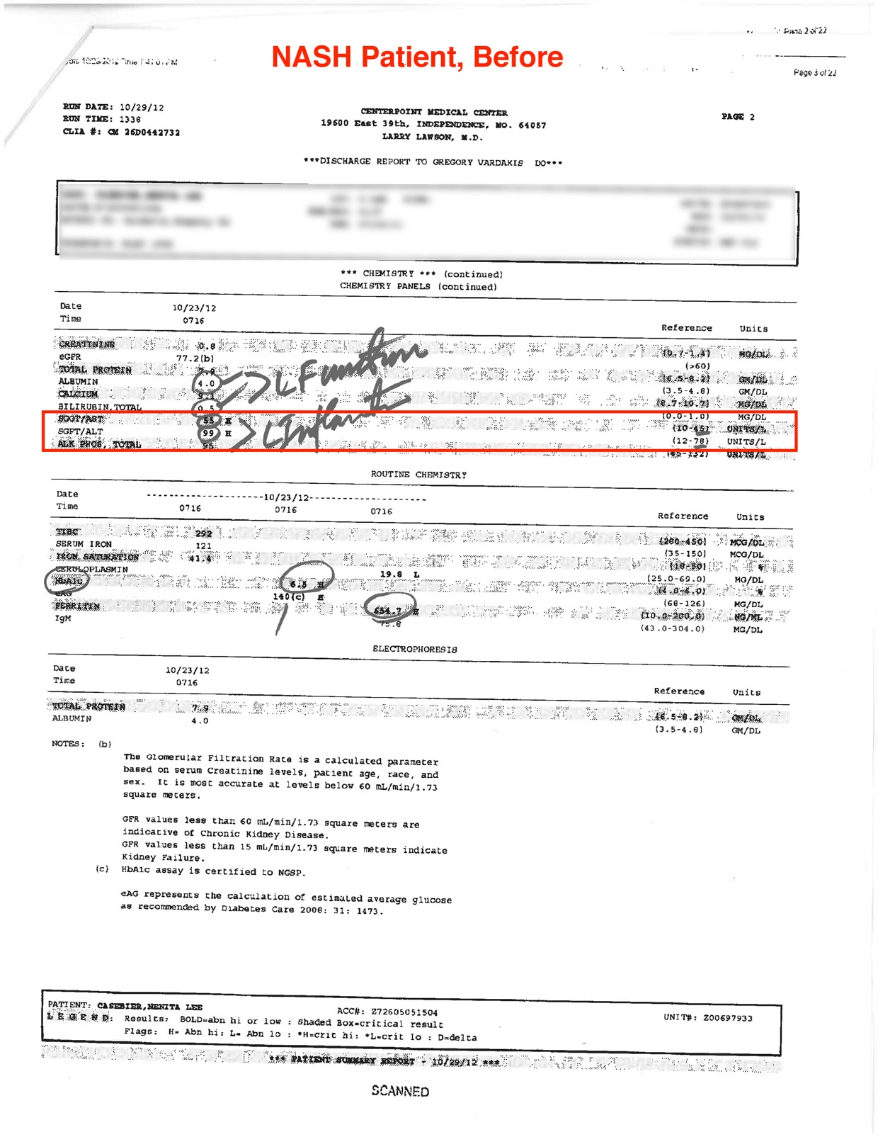 blood test report - Before use YHK Liver Therapy