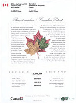 Canada patent of invention